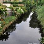 Antibiotic-resistant genes found in Londons canals and ponds