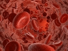 Rejuvenating Blood of Mice by Reprogramming Stem Cells That Produce Blood